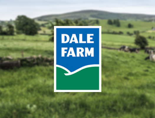 About Us - Dale Farm